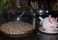 Седем билки+ една в чая БЕАТРИКС  7 + 1